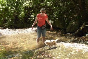 Sausal Creek splash (Ronald Owens)