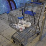 A grocery cart provides an alternative to grocery bags.