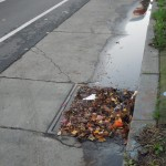 "Blocked storm drains create their own unique ""lake"".