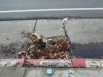 Blocked storm drains from leaves and debris cause can flooding on the streets and sidewalks. 