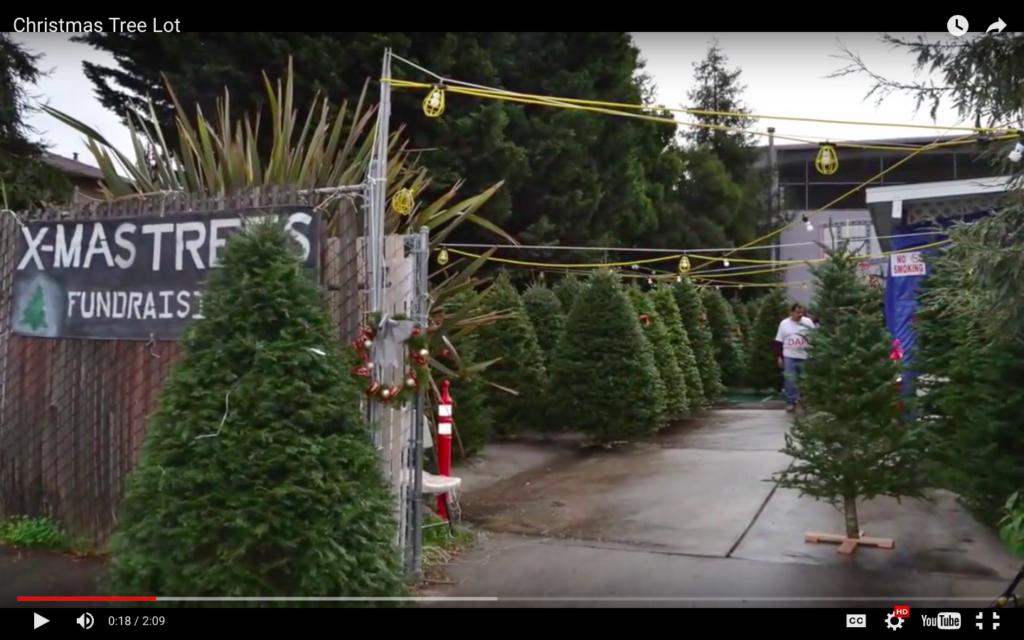 La Luz del Mundo's Annual Christmas Tree Fundraiser