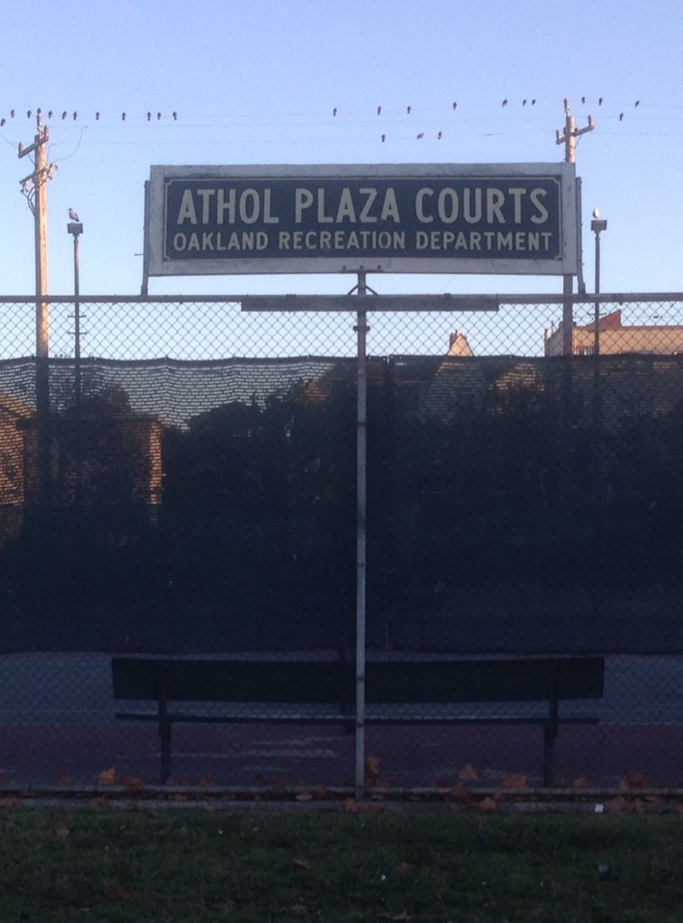 Athol Plaza Courts and Open Art Studio