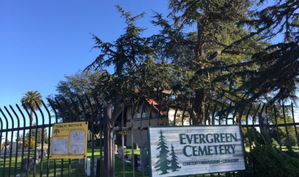 Finding Hope and Solace in Death:  Evergreen Cemetery